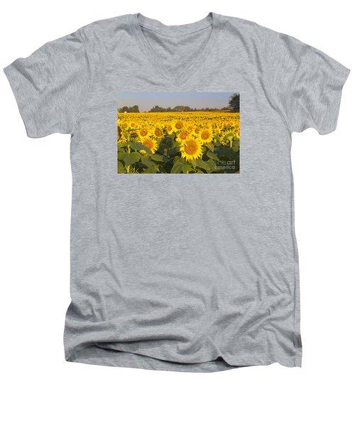 Sunshine Flower Field Men's V-Neck T-Shirt