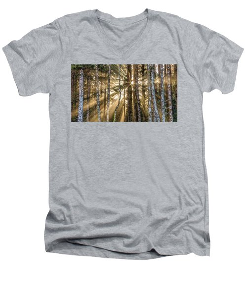 Sunshine Forest Men's V-Neck T-Shirt by Pierre Leclerc Photography