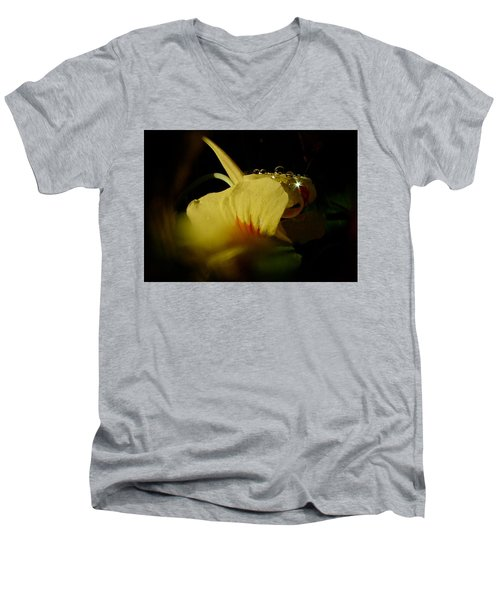 Men's V-Neck T-Shirt featuring the photograph Sunshine In The Bubble by Richard Cummings
