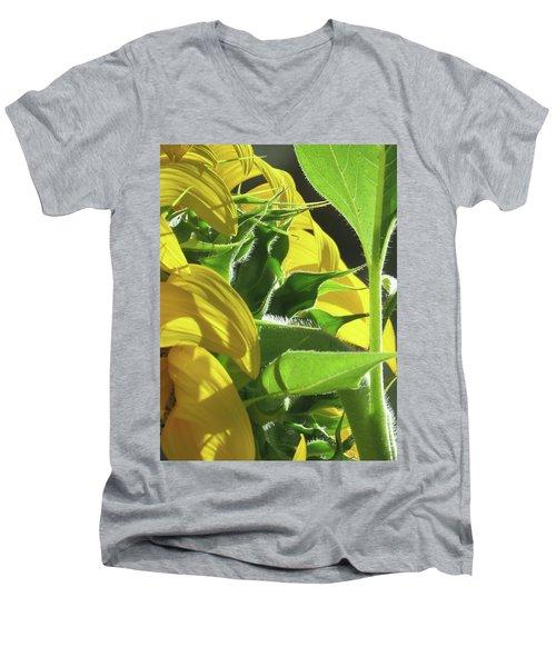 Sunshine In The Garden 18 Men's V-Neck T-Shirt by Brooks Garten Hauschild