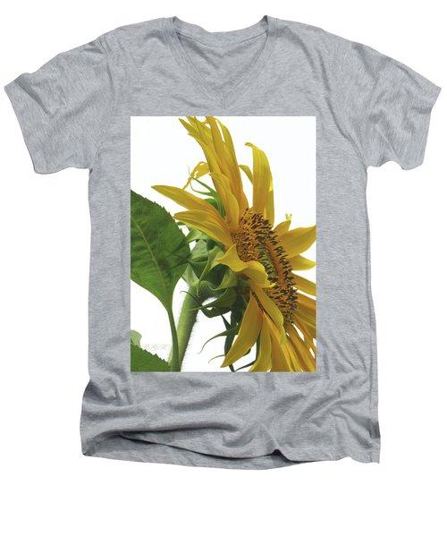 Sunshine In The Garden 25 Men's V-Neck T-Shirt by Brooks Garten Hauschild