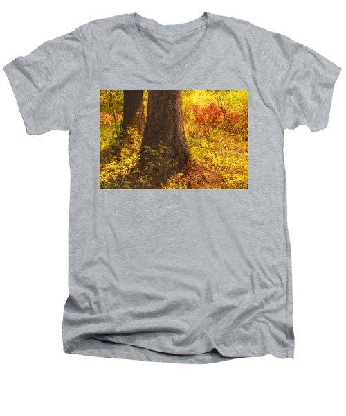 Sunstream Men's V-Neck T-Shirt