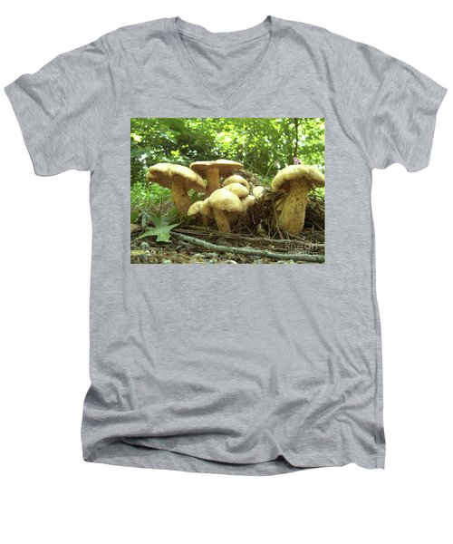 Surprise Fungi In Gibbs Garden Men's V-Neck T-Shirt