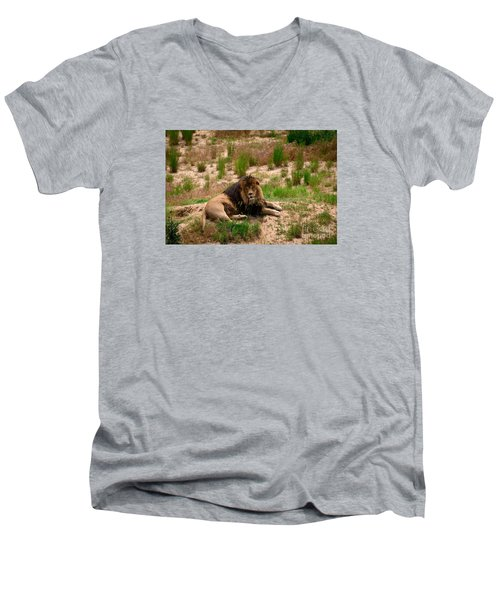 Survivor Men's V-Neck T-Shirt by Sandy Molinaro