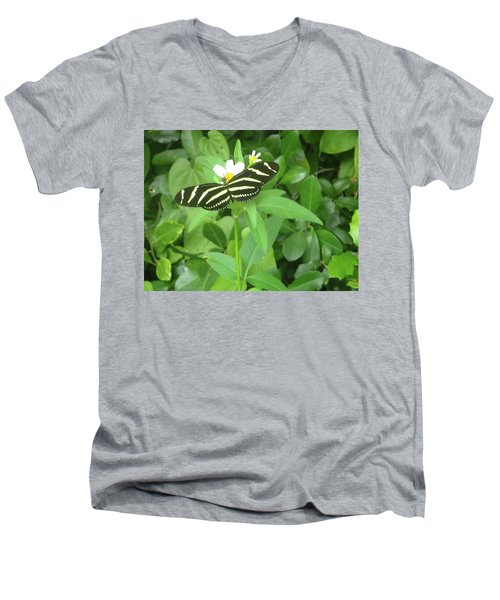 Swallowtail Butterfly On Leaf Men's V-Neck T-Shirt