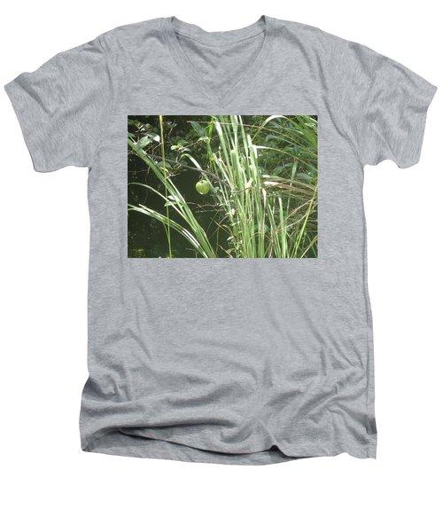 Swamp Apple Men's V-Neck T-Shirt