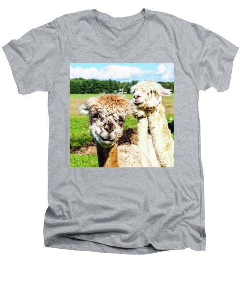 The Soft Joy Of Apacas Men's V-Neck T-Shirt