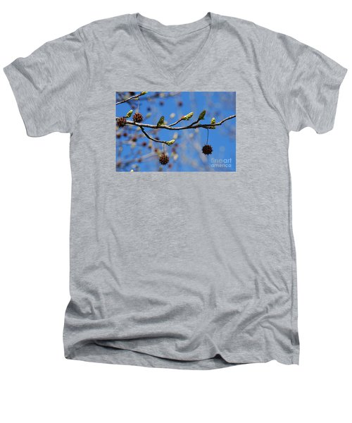 Men's V-Neck T-Shirt featuring the photograph Sweet Gum Catkins 20120405_206a by Tina Hopkins