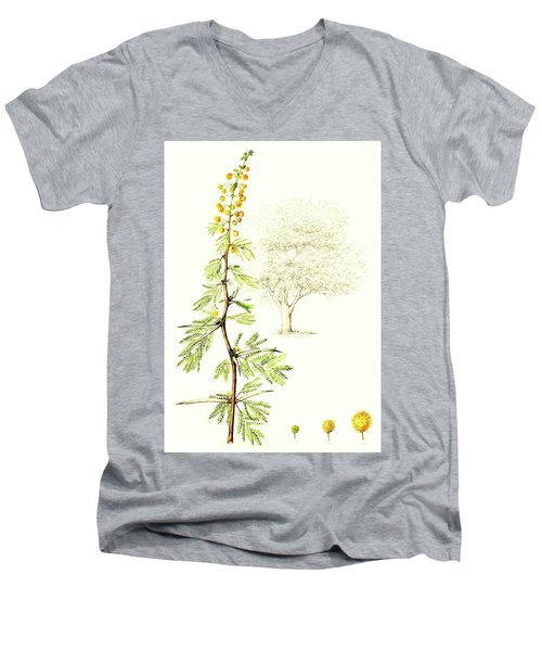 Men's V-Neck T-Shirt featuring the painting Sweet Thorn Botanical Illustration by Heidi Kriel
