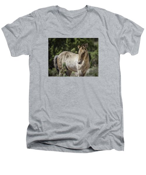 Sweetness Men's V-Neck T-Shirt by Elizabeth Eldridge