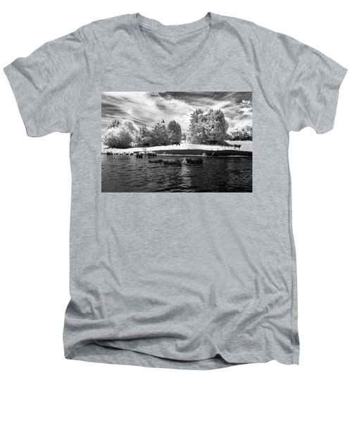 Swimming With Cows II Men's V-Neck T-Shirt by Paul Seymour