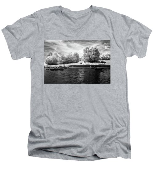 Swimming With Cows Men's V-Neck T-Shirt by Paul Seymour