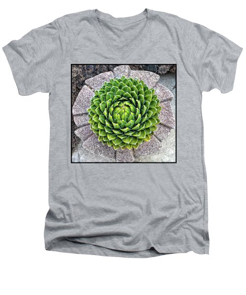 Symmetry Men's V-Neck T-Shirt