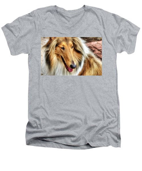 Taffy Collie Men's V-Neck T-Shirt