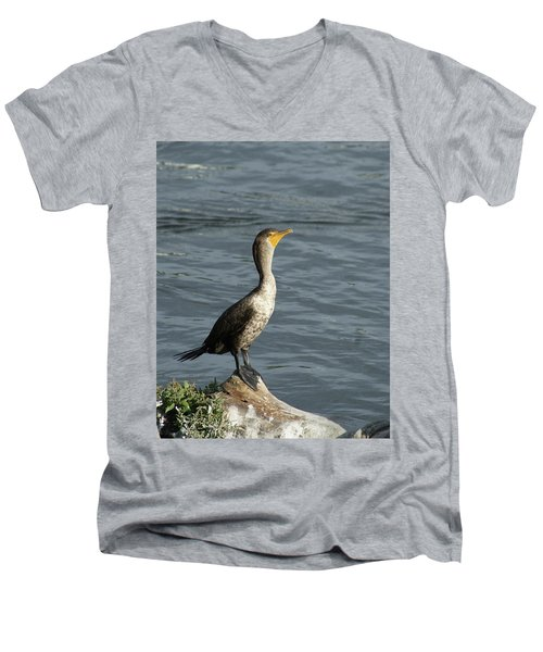 Take My Picture - Cormorant Men's V-Neck T-Shirt