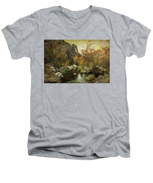 Men's V-Neck T-Shirt featuring the photograph Taking A Hike by Barbara Manis
