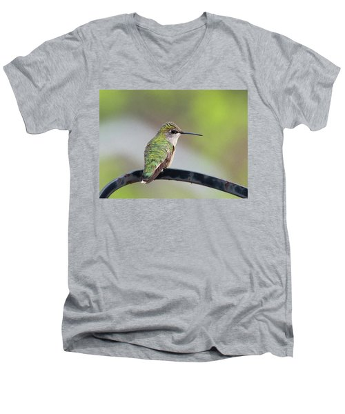 Taking A Rest Men's V-Neck T-Shirt