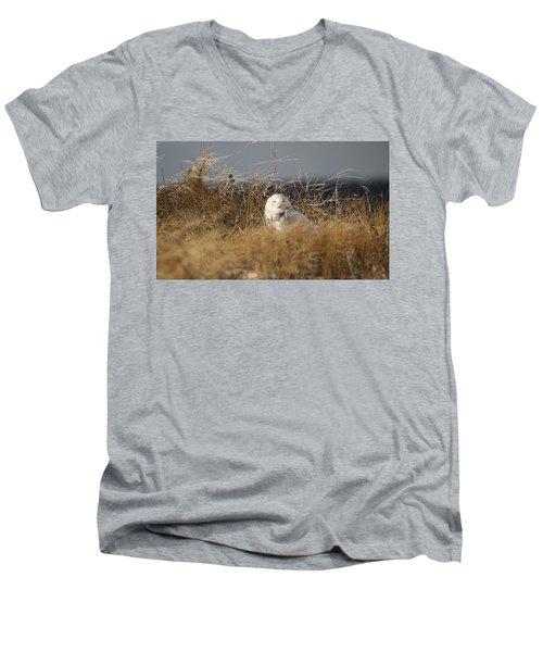Taking In The Winter Sun Men's V-Neck T-Shirt