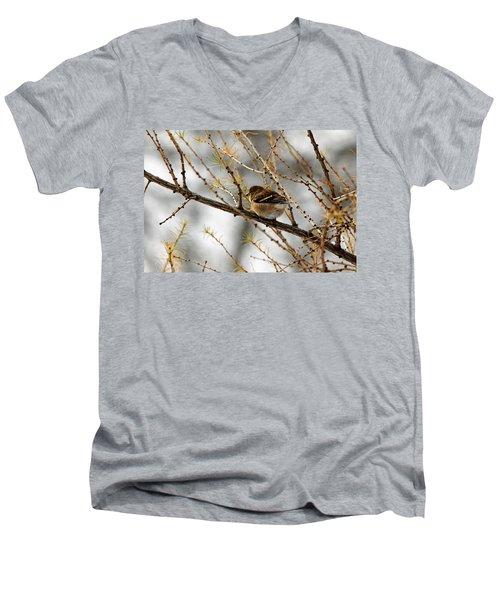 Tamarack Visitor Men's V-Neck T-Shirt by Debbie Oppermann