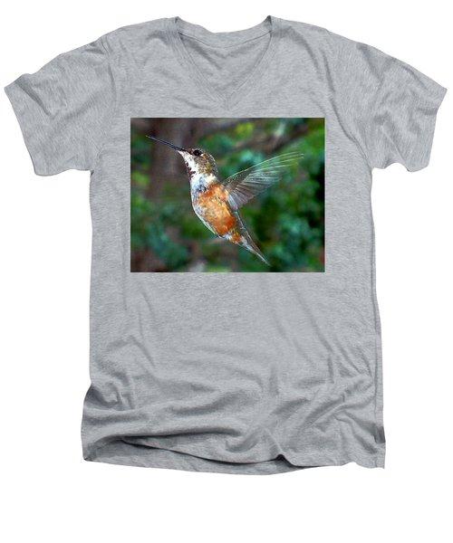 Tan Hummingbird Men's V-Neck T-Shirt by Joseph Frank Baraba