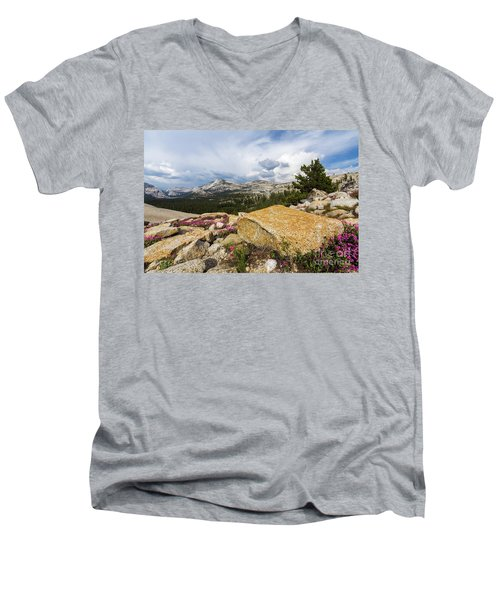 Tanya Overlook  Men's V-Neck T-Shirt