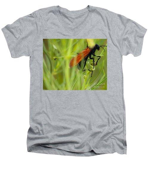 Tarantula Hawk 1 Men's V-Neck T-Shirt