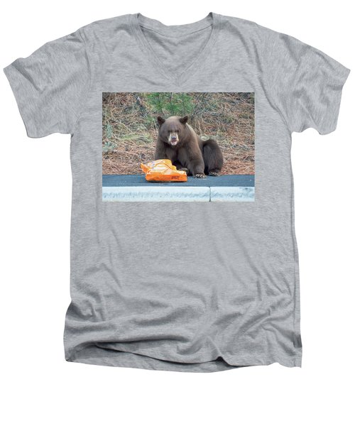 Taste Of The Wild Men's V-Neck T-Shirt