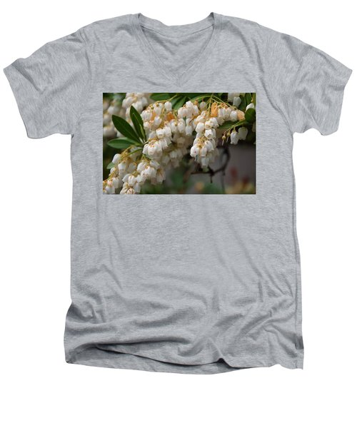 Men's V-Neck T-Shirt featuring the photograph Temple Bells Andromedia by Chris Flees