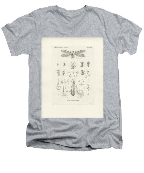 Termites, Macrotermes Bellicosus Men's V-Neck T-Shirt