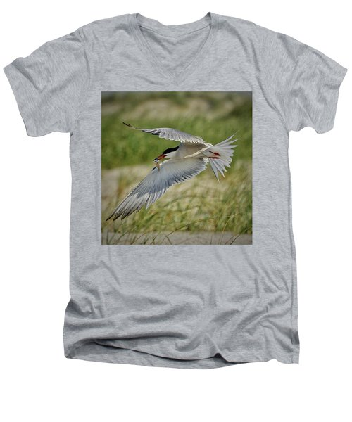 Tern Men's V-Neck T-Shirt