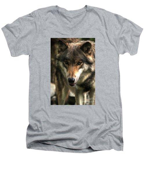 Teton Dribbling Men's V-Neck T-Shirt by William Fields
