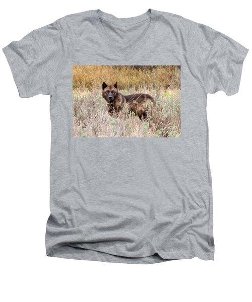 Teton Wolf Men's V-Neck T-Shirt