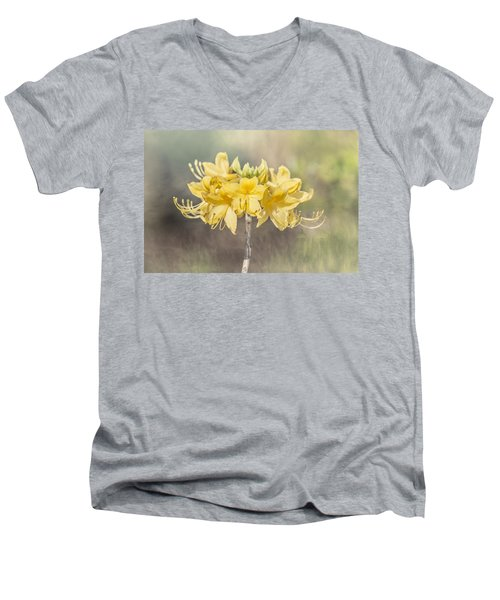 Texas Azalea -textured Men's V-Neck T-Shirt