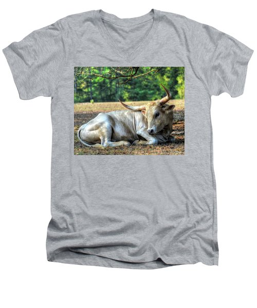 Texas Longhorn Gentle Giant Men's V-Neck T-Shirt