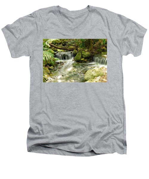 The Babbling Brook Men's V-Neck T-Shirt