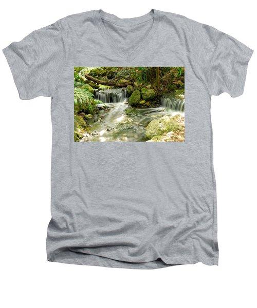 The Babbling Brook Men's V-Neck T-Shirt