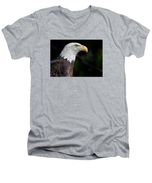 The Beak Pointeth Men's V-Neck T-Shirt