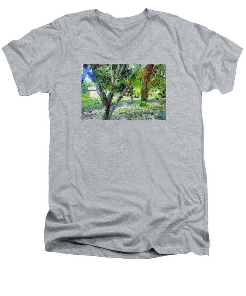 The Beauty Of Trees Men's V-Neck T-Shirt