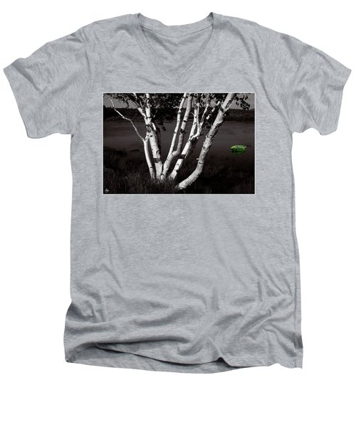 The Birch And The Green Dingy Men's V-Neck T-Shirt