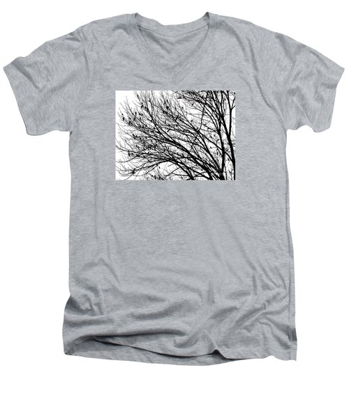 The Birds Men's V-Neck T-Shirt