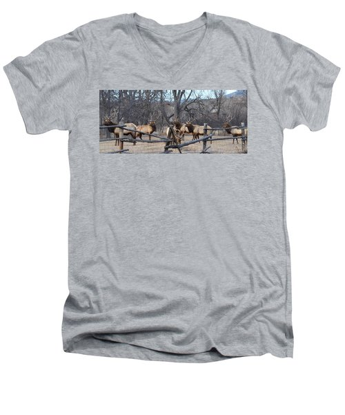 Men's V-Neck T-Shirt featuring the photograph The Boys by Billie Colson