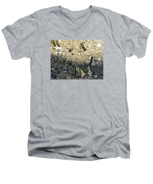 The Butterfly Dance Men's V-Neck T-Shirt by Charlotte Gray