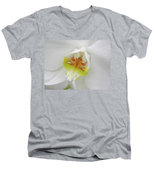 The Cat Side Of An Orchid Men's V-Neck T-Shirt