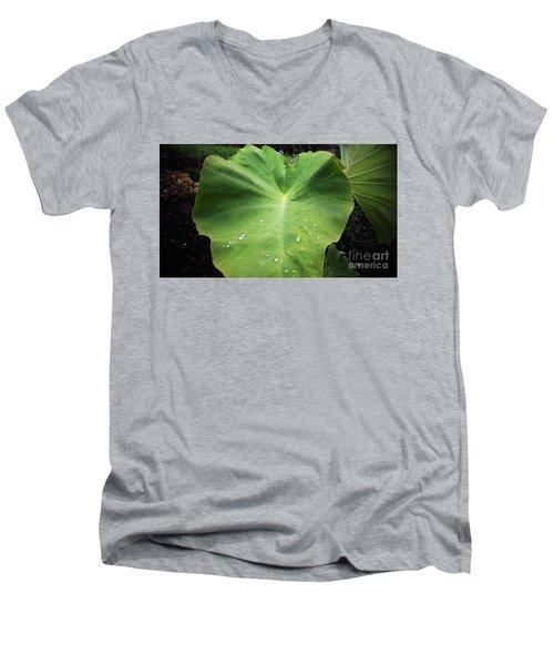 The Catcher Men's V-Neck T-Shirt