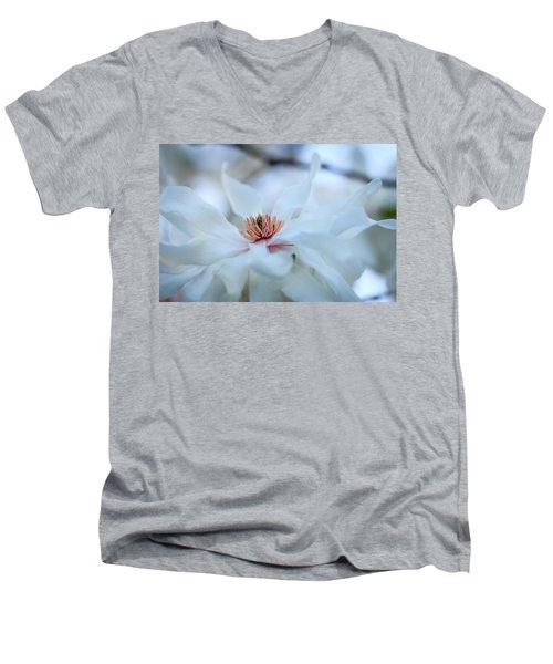 The Center Of Beauty Men's V-Neck T-Shirt