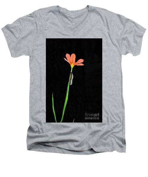 The Climb Men's V-Neck T-Shirt by Cassandra Buckley