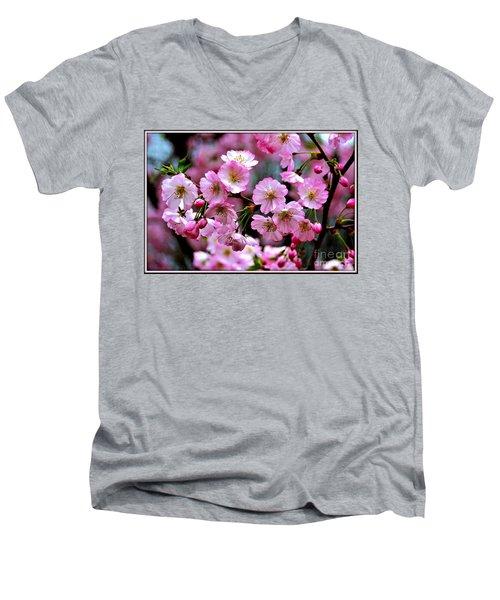 The Delicate Cherry Blossoms Men's V-Neck T-Shirt