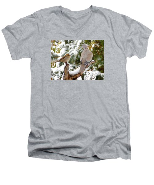 The Dove And The Swallow Men's V-Neck T-Shirt by Deborah Moen