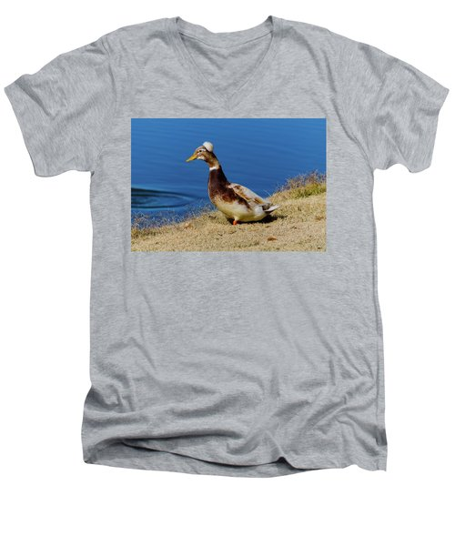 The Duck With The Pillbox Hat Men's V-Neck T-Shirt