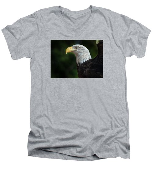 The Eagle Men's V-Neck T-Shirt by Greg Nyquist